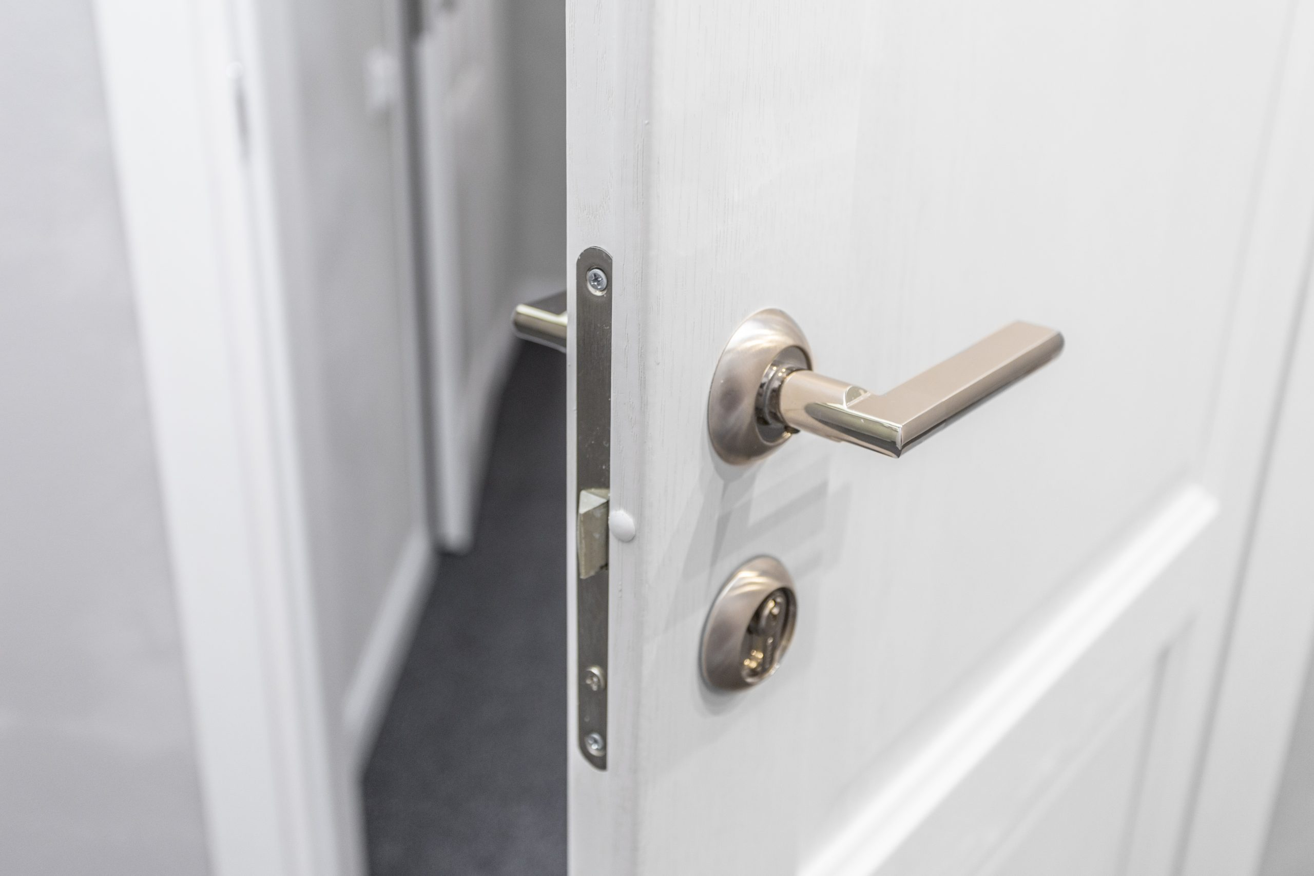 דלתות , דלתות פנים